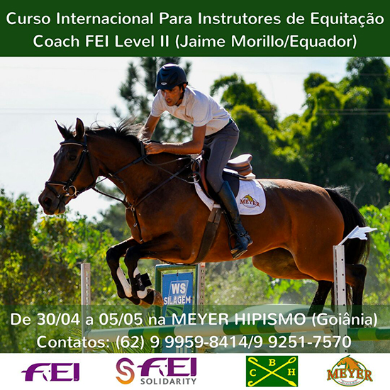 FEI COURSE FOR CHACHES LEVEL 2 GOIANIA550